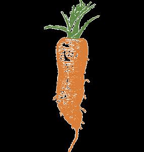 carrot-32910_640