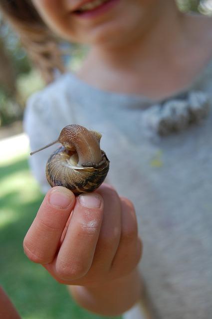 escargot enfant