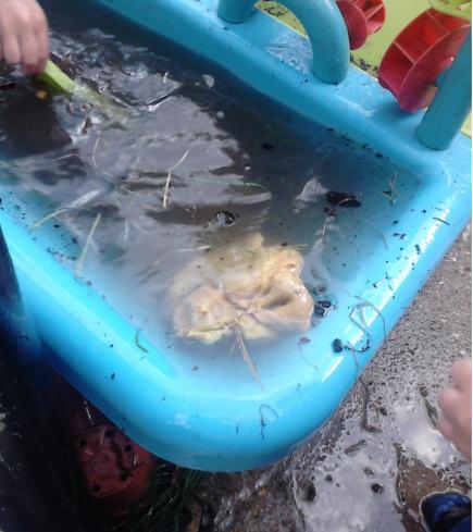 Pâte à modeler dans l'eau